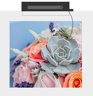 SL-Pinterest